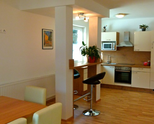 moderne Wohnküche und Bar-Apartment Montanara in Ramsau am Dachstein